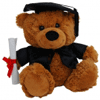 Graduation Bear 23cm 'Bear Jelly'- Bulk Discounts