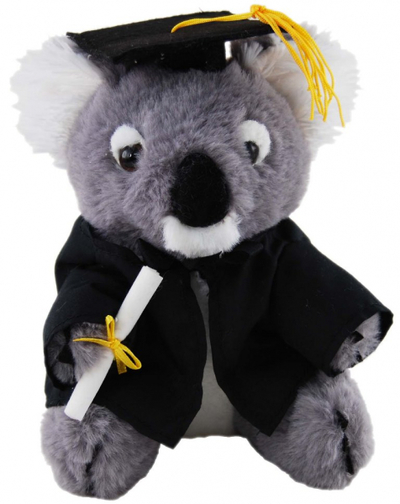 Graduation Koala 18cm - Bill - Bulk Discounts