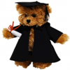 Graduation Bear 25cm 'Andrew' - Fully Jointed