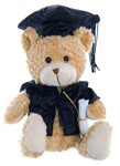 Graduation Bear 20cm 'Big Brother' - Bulk Discounts