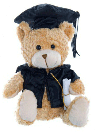Graduation Bear 20cm 'Big Brother' - Clearance Item