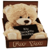 Teacher - y Favourite Teacher - Bear in Box